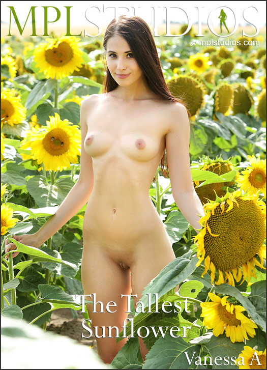 MPLSTUDIOS Vanessa A in The Tallest Sunflower  [PHOTOSET FULLRES HD ] PORN RIP