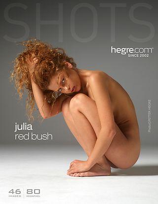 Hegre-Art Julia red bush  [Siterip FULL VIDEO/IMAGESET] PORN RIP