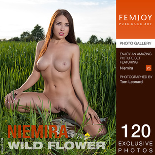 FEMJOY Niemira in Wild Flower July 2, 2017 [IMAGESET MP16 NUDEART] PORN RIP