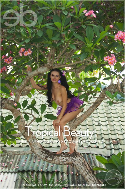 Erotic-Beauty Mirela A in Tropical Beauty  Siterip Imageset Erotic-Beauty.com PORN RIP