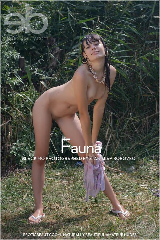 Erotic-Beauty Black MO in Fauna  Siterip Imageset Erotic-Beauty.com WEB-DL